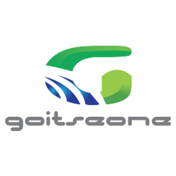 GOITSEONE TRADING & PROJECTS